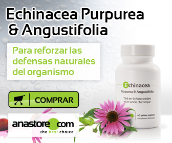 Echinacea Purpurea & Angustifolia