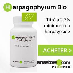 Harpagophytum Biologique