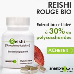Reishi Rouge Bio (Ganoderma lucidum)