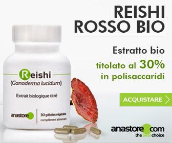 Reishi Rosso Bio (Ganoderma lucidum)